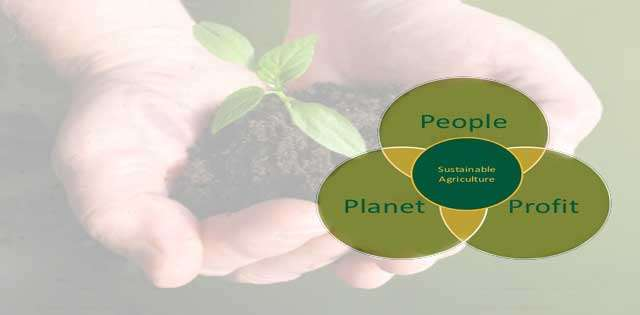 Top Sustainable Agriculture Questions and Answers