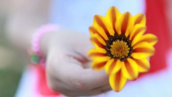 Flowers That Symbolize Love – Flowers That Mean Love